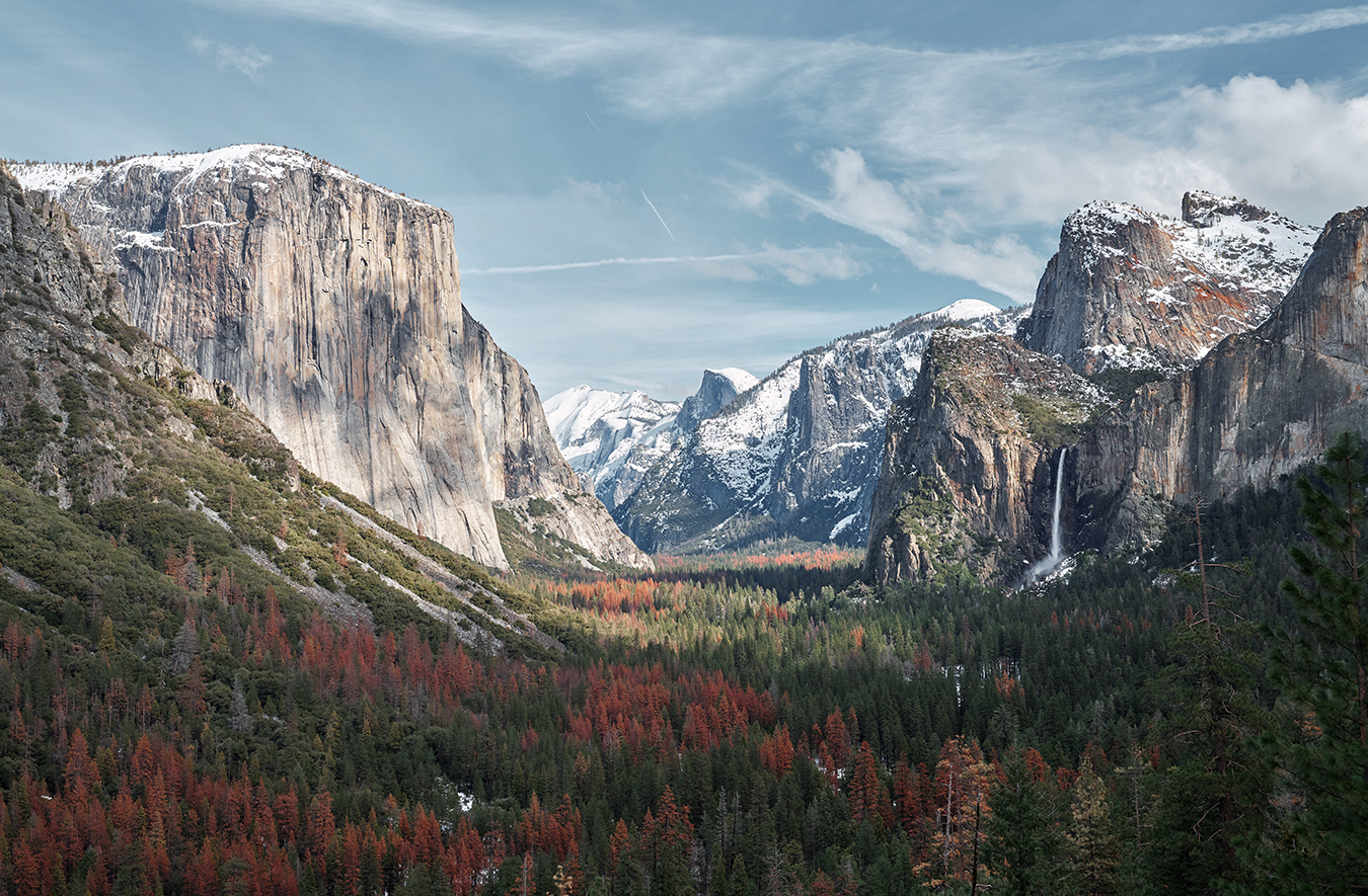Climbing with Alex Honnold in Yosemite National Park's image